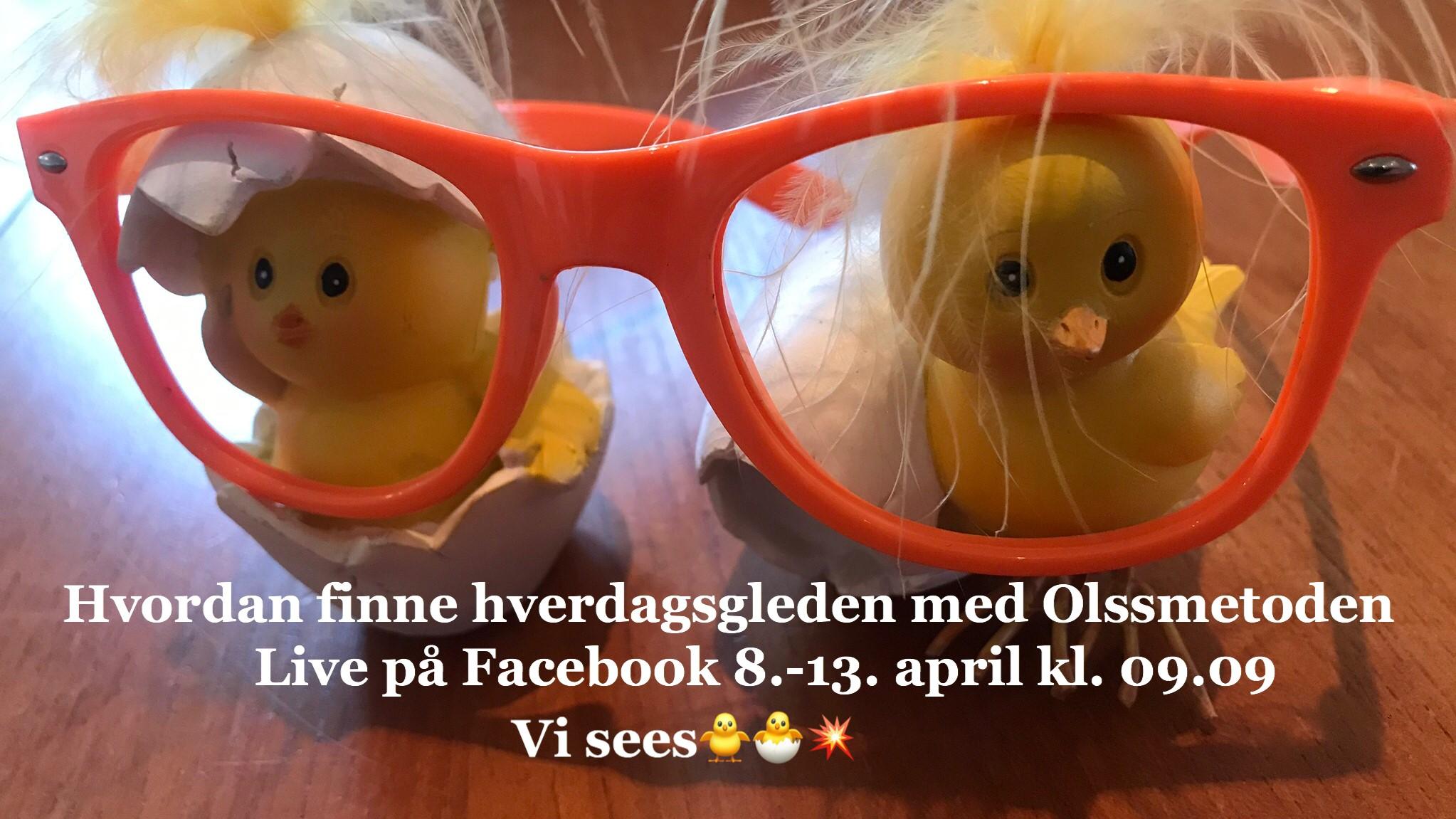 Vibeke Olss